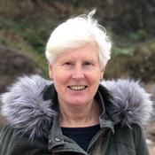 Sue Nawrocki